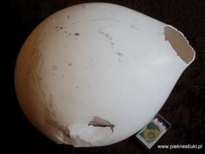 marmo-babel-2-www.pieknestiuki